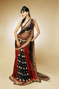 A great Indian sari