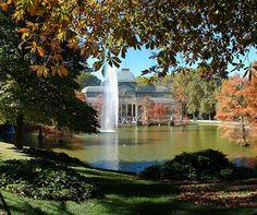 El otoño en el Palacio de Cristal del Parque del Retiro. Madrid. España.