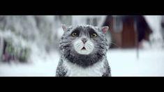 """Le Noël de Mog le chat -- Sainsbury's Mog, le Chat Étourdi (Mog the Forgetful Cat) est une série de livres pour enfants très connus au Royaume-Uni. L'auteur et illustratrice de ces livres, Judith Kerr, âgée de 92 ans, fait d'ailleurs un caméo à 2 minutes 27 (c'est la vieille dame qui dit """"ce chat mérite une médaille"""").   Mog est un chat qui fait beaucoup de bêtises et il aime particulièrement manger des œufs, son pêché mignon."""