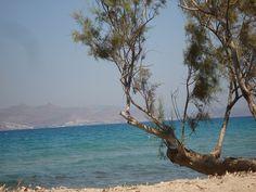 Beach Tigaki, Kos
