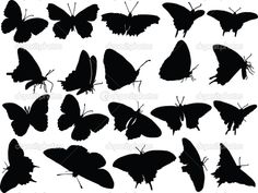 Butterfly silhouette collection — Stock Vector © vule46 #2155022