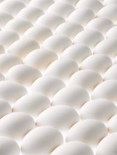 Photographic Print: White Eggs, Lying on Their Sides, One Opened by Klaus Arras : High Key Photography, Still Life Photography, White Photography, Minimalist Photography, Urban Photography, Pattern Photography, Abstract Photography, Macro Photography, Photography Blogs