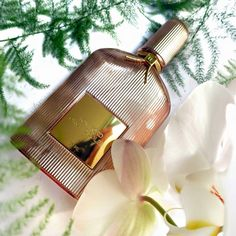 Orchid Soleil by Tom Ford #fragrances #parfums #beauty #cosmetics #shopping