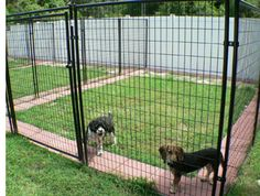 Patio pavers around the border of the kennel to discourage tunneling under the cage.