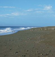 El litoral de Tierra de Fuego muestra un aspecto muy plano y grandes zonas intermareales, que son características de la llanura de marea.