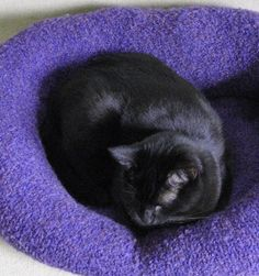 An old sweater you don't use anymore would make a great lovey for your furry friend. Check out this fabulous Sweater Pet Bed Tutorial.(awwww this looks like our Buddy kitty! Ramones, I Love Cats, Crazy Cats, Old Sweater, Upcycled Sweater, Sweaters, Sweater Shirt, Diy Cat Toys, Animal Projects