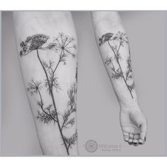 graphic blackwork botanical tattoo idea on forearm