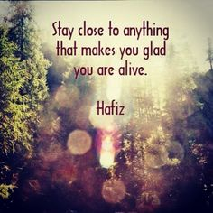 Stay close to anything that makes you glad you are alive - Hafiz