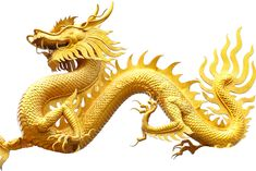 Attract Money, Dragon, Pictures, Trains, Places, Youtube, Design, Songs, Photos