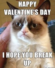 17 Valentine S Day Memes That Will Have You Loving Valentines Day I Can Has Cheezburger Grumpy Cat Humor Grumpy Cat Valentines Funny Grumpy Cat Memes