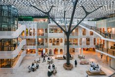 Four workspaces in the Netherlands built with a focus on sustainable, circular design - News - Frameweb
