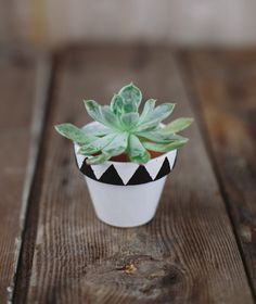 Image Source Decorating terra cotta pots in a simple way to add color to your plantings! Produce something interesting for your home by painting your terra cotta pots. Painted Flower Pots, Painted Pots, Painted Pebbles, Fleurs Diy, Diy Planters, Terracotta Pots, Garden Crafts, Clay Pots, Container Plants