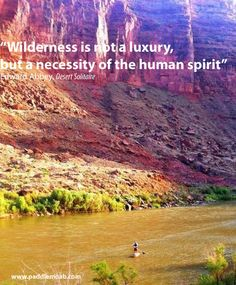 Find your own piece of wilderness paddle boarding on the Colorado River. Moab, UT.   www.paddlemoab.com
