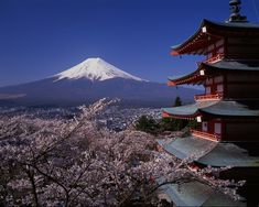Visit Japan and experience the cultural and architectural differences.