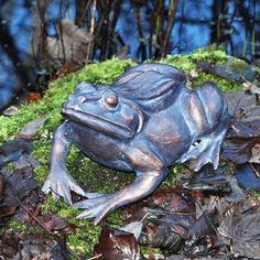 View our great quality, highly original range of metal garden ornaments and sculptures. Garden Frogs, Garden Art, Metal Garden Ornaments, Cute Frogs, Frog And Toad, Ornaments Design, Parcs, Garden Statues, Garden Inspiration