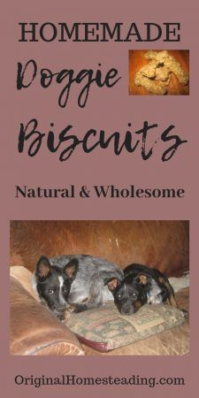 Homemade Doggie Biscuits Are Easy To Make Homemade Snacks Recipes Dog Biscuit Recipes Homemade