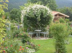 Rosenlaube - Bilder und Fotos