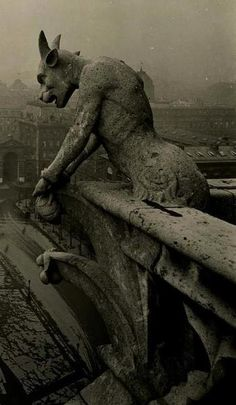 pubertad:    Amazing vintage photo of the famous gargoyle at Notre Dame. Year unknown.