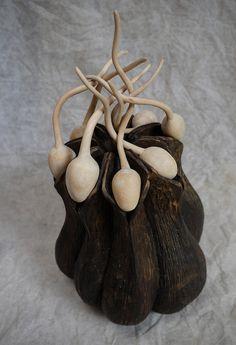 seed head by larrywilkes, via Flickr