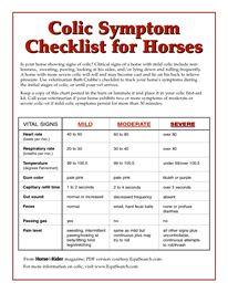 Colic Symptom Checklist for Horses Colic Symptom Equisearch