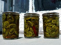 Sweet Pickled Fiddlehead Ferns- Putting Up with Erin