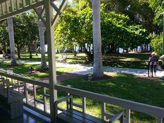 Beautiful gardens on Edison Estates