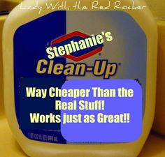 DIY Clorox Clean-Up (more than just bleach and water).