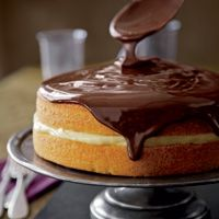 Boston Cream Pie Cake ... recipe from scratch, rich butter cake layered with Vanilla Bean Pudding and topped with a decadent Chocolate Glaze