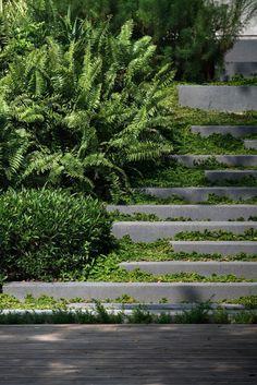Residence Rain Trees (II) Landscape Architecture is part of Modern landscaping Residence Rain Trees Architects Modern Landscape Design, Landscape Architecture Design, Green Landscape, Modern Landscaping, Backyard Landscaping, Landscape Architects, Landscaping Ideas, Architecture Jobs, Patio Ideas