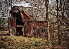 Dilapidated old shed---things these walls could tell us.