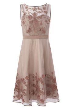 Pavlova tulle dress by Coast. Very Downton Abbey!