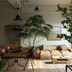 Home Interior Inspiration Light Study on Behance Living Room Interior, Home Interior Design, Living Room Decor, Living Spaces, Earthy Living Room, Tree Interior, Design Interiors, Interior Livingroom, Interior Garden