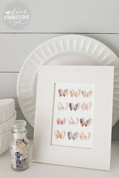 Dear Emmeline: Vacation Memories: Seashell Specimen Art - DIY