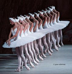 New photography dance ballet swan lake 18 Ideas Ballet Art, Ballet Dancers, Ballet Images, Ballet Theater, Pretty Ballerinas, Ballerina Dancing, Dance Movement, Shall We Dance, Ballet Photography