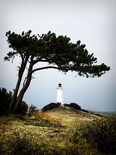 """The """"Dornbusch"""" lighthouse, on the island of Hiddensee, Germany, on the Baltic Sea."""