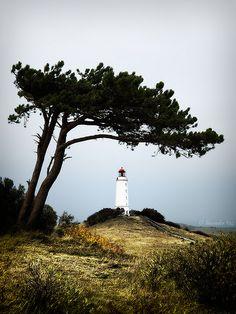 """Leuchturm """"Dornbusch"""" auf Hiddensee, westlich von Rügen gelegen. Meine absolute deutsche Lieblingsinsel."""