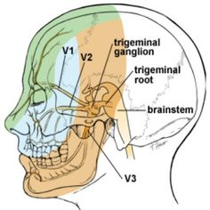 9 Best Home Remedies For Trigeminal Neuralgia
