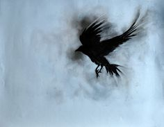 Original Charcoal Crow Drawing Raven Flying Gothic by AbstractArtM