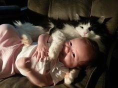 Fluffy hugs!