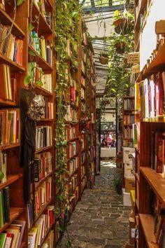 Endless shelves of books + plants = heaven