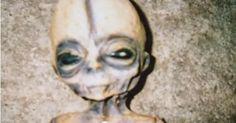 Focus.de - Raumfahrt-Ingenieur: 18 Außerirdische arbeiten für die USA