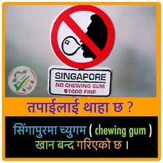 Instagram photo by KK CONCEPT (नेपाली) • Jun 24, 2019 at 9:00 AM Chewing Gum, Jun, Singapore, Concept, Instagram Posts, Bubble Gum, Gumball