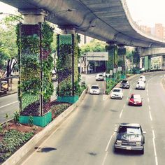 green walls on highway, green infrastructure