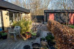 For at rengøre trædæk og fjerne grønne alger - Almbacken Garden Design Outdoor Planters, Outdoor Decor, Back Patio, Rum, Garden Design, Cabin, Landscape, House Styles, Plants