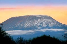 Kilimanjaro [Credit: © Anna Omelchenko/Fotolia]