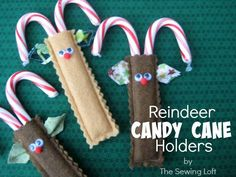 Reindeer Candy Cane Holders Quick and Cute  Great idea! #christmas #ornament #reindeer