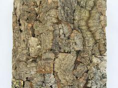 cork+bark+wall | Cork Wall Tiles Natural Cork Top | Jelinek Cork