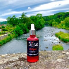 "The Official Outlander on Instagram: ""🌐 www.faileagscottishrosehipoil.co.uk 🌐 🌹🌹🌹 Our SkinCare range of Rosehip FaceOils, HandCrafted 👩🏼‍🍳 in Scotland to a traditional Scottish…"" Rosehip Oil, Outlander, Scotland, Skincare, Soap, Range, Personal Care, Traditional, Bottle"