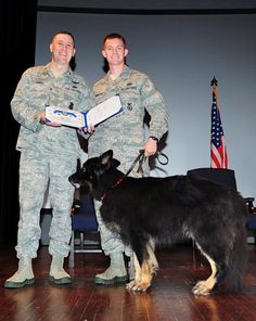 U.S. Air Force Maj. Troy Jones, 4th Security Forces Squadron commander, presents a certificate to Staff Sgt. Joseph Swartout, 4th SFS military working dog handler, and Frisco, retired MWD, during a retirement ceremony on Seymour Johnson Air Force Base, N.C., Oct. 26, 2012. Each of the dogs' leashes was ceremoniously passed to their new owner prior to receiving their certificate. (U.S. Air Force photo/Airman 1st Class Aubrey White/Released)