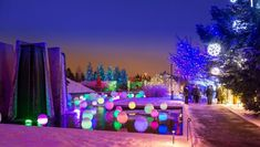 Begin a new holiday tradition by loading up the car and visiting these 12 Christmas light displays in Colorado that are pure magic. Denver Events, Denver City, Denver Colorado, Colorado Trip, Colorado Springs, Best Christmas Light Displays, Best Christmas Lights, Christmas 2019, White Christmas